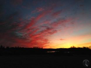 sunset_3727p