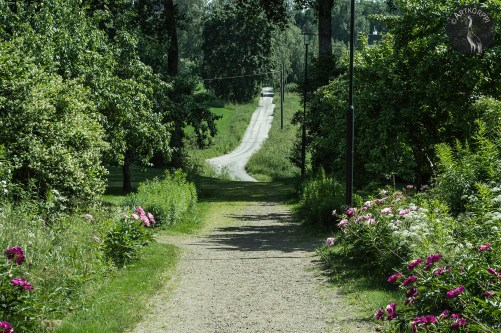 An old village road to Sääksmäki church.