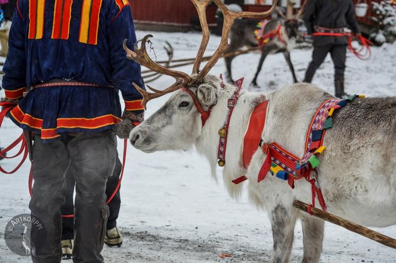 sleigh_ride0075p