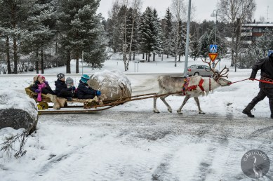 sleigh_ride_0140p