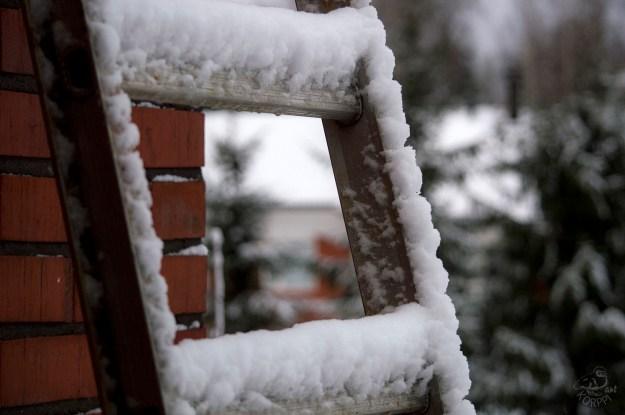 snowy_ladder_0028p