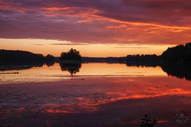sunset_birds_P1010026p