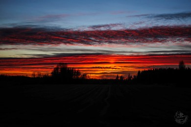 christm_eve_sunsetP1030340p