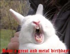 wpid-birthday-bunny.jpg.jpeg