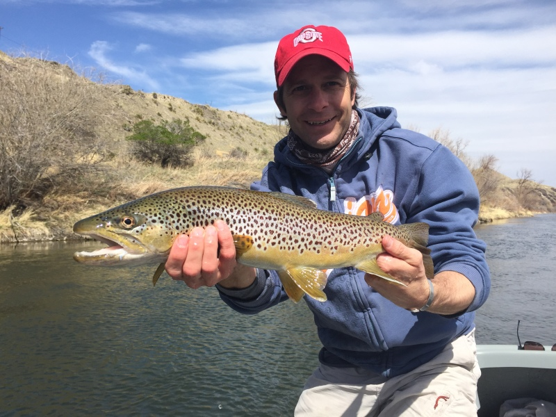 missouri river, brown trout, craig montana, firstcastoutfitters.com, firstcastoutfitters, first cast outfitters, Mo, missouri, dry fly