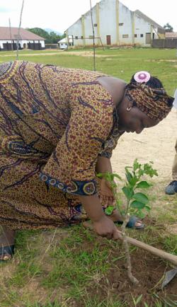 nigeria-tree-planting-woman