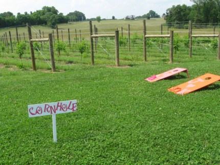 Corn Hole Game/ Vineyards