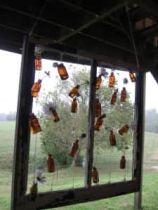 Flower Bottle Frame