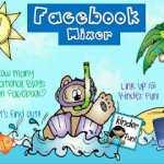 Facebook Mixer Linky Party