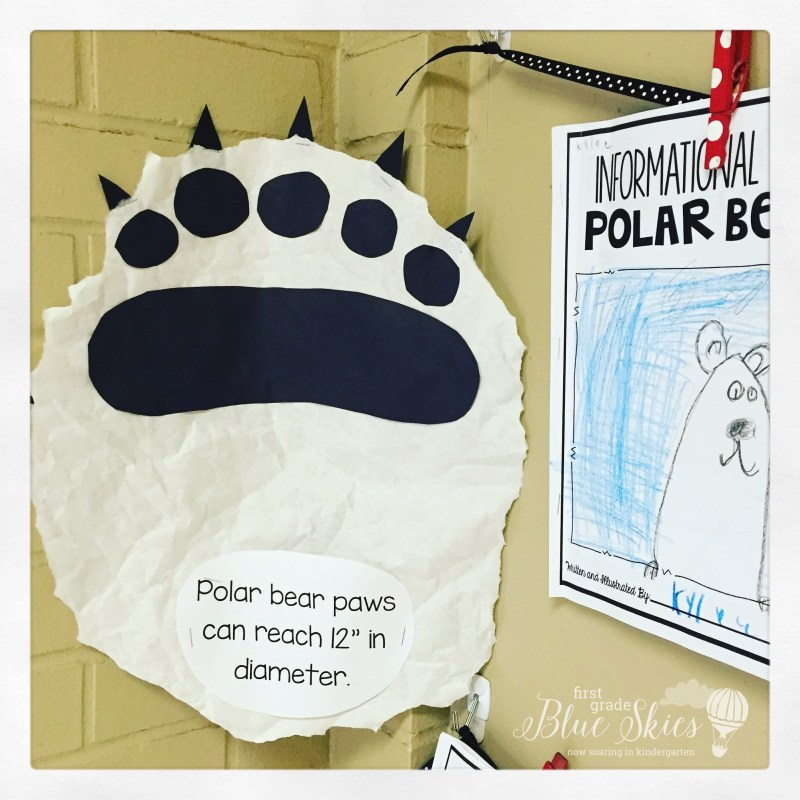 polar bear paw activity