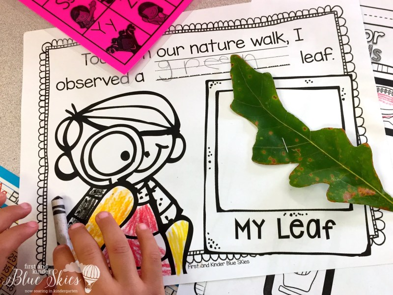 leaf-hunt-kindergarten