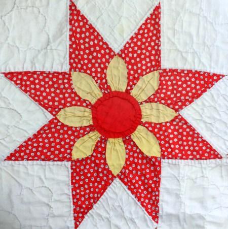 floral star block 9-001