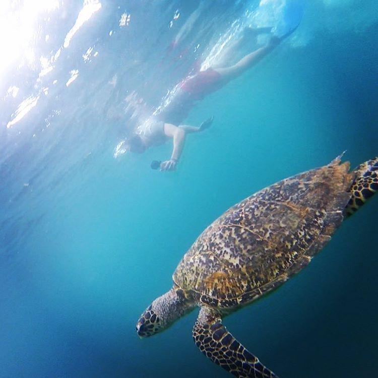 Suasana bawah laut Gili Air di Lombok, sumber ig paulsamuelbaker