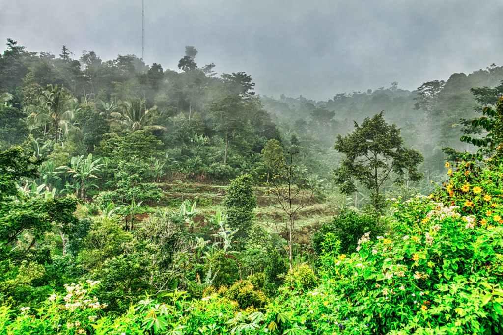 Desa Wisata Lombok