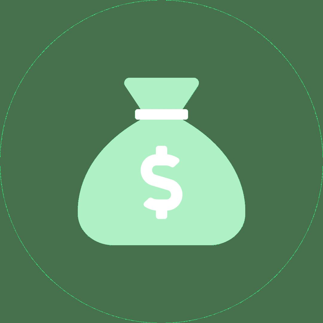 money bag lite