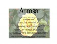 arrosa-1024x791