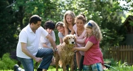 healthy-family-relationships