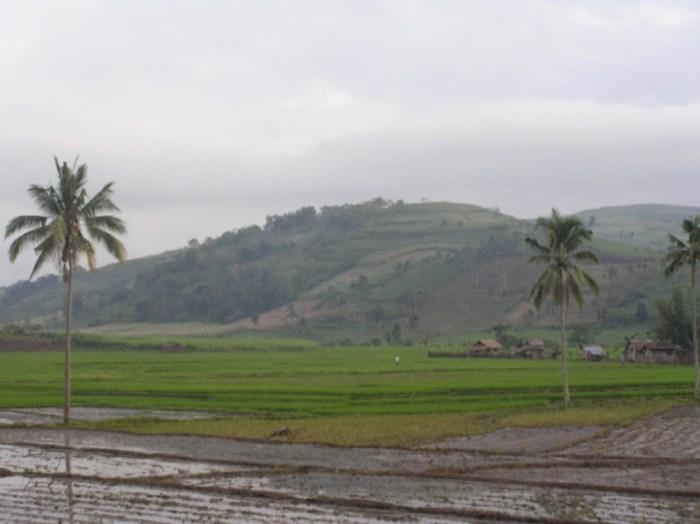 Kanlaon city