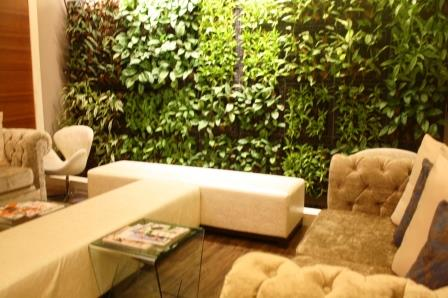Vietura's lounge. The whole institute is an oasis with its green walls.