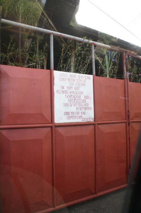 To know more about the place and make appointments, check the signage on the gate.