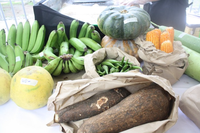 More veggies, fruits, root crops...what a harvest!
