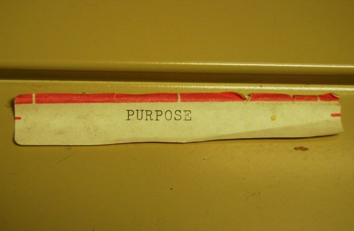 purpose photo