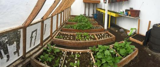 Arviat's Greenhouse, Photo by Arviat Goes Green