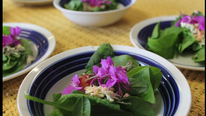Marinated maktaaq salad, by Arviat Wellness Centre