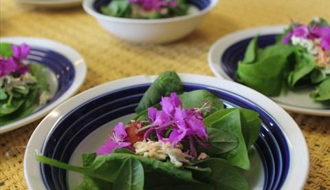 Marinated Maktaaq Salad from Arviat, Nunavut