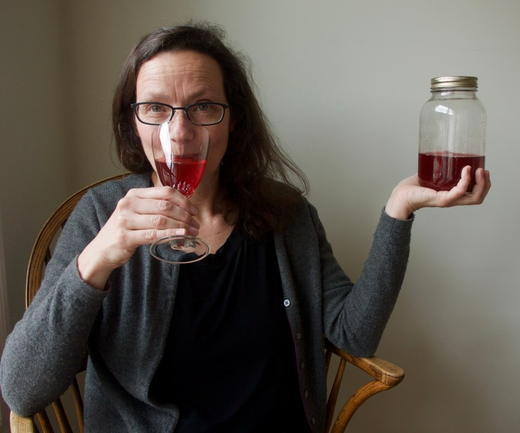 Low Bush Cranberry Refresher