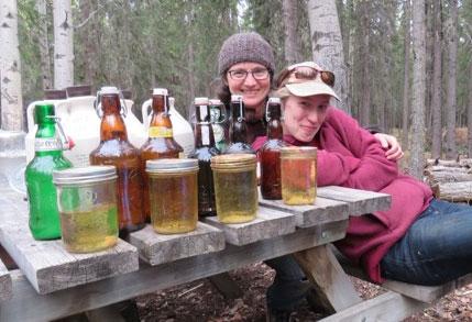 Refreshing and Versatile Birch Sap