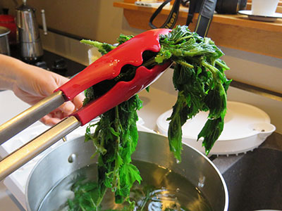 Cooked nettle recipe from FirstWeEat.ca, the Food Security North of 60 website supporting First We Eat, a documentary by Yukon filmmaker Suzanne Crocker about eating only locally-grown foods in in Dawson City, Yukon, in Canada's North, for one year.