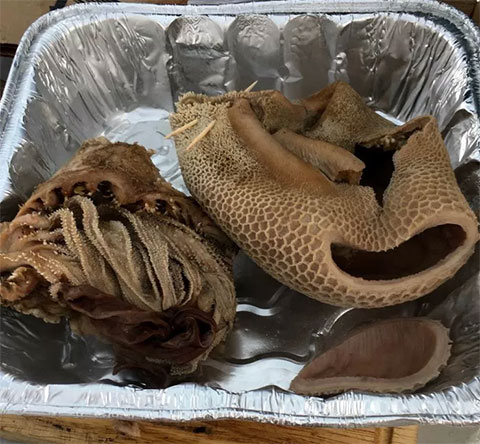 The Guts of the Matter:The 'bible' and tripe — two different parts of caribou stomach served at Our Camp is Our Kitchen as part of the Tr'ondëk Hwëch'in First Nation's 'Myth and Medium 2018' conference.