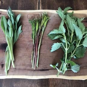 Spanakopita-ingredients-1