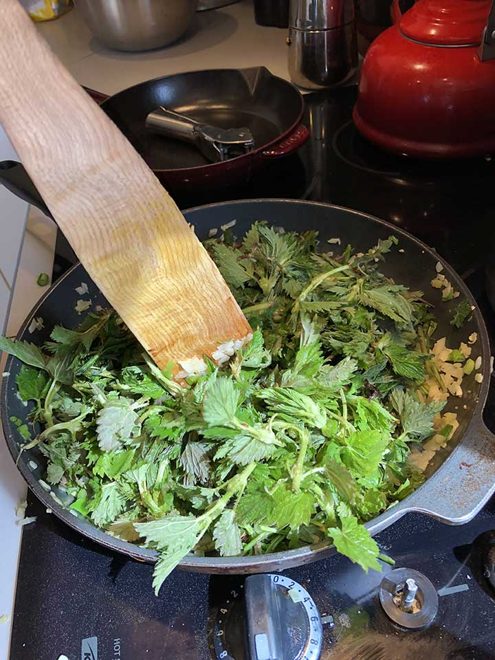 Spanakopita-ingredients-21