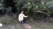Milton, Encarregado da Limpeza da Zona Oeste faz plantio no Rio Pitimbu