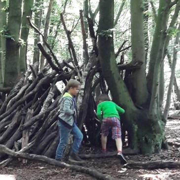 Den Wald mit allen Sinnen genießen – Klassenfahrt 2. Tag