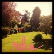 Relaxing in sunny Surrey