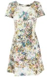 meadow floral dress