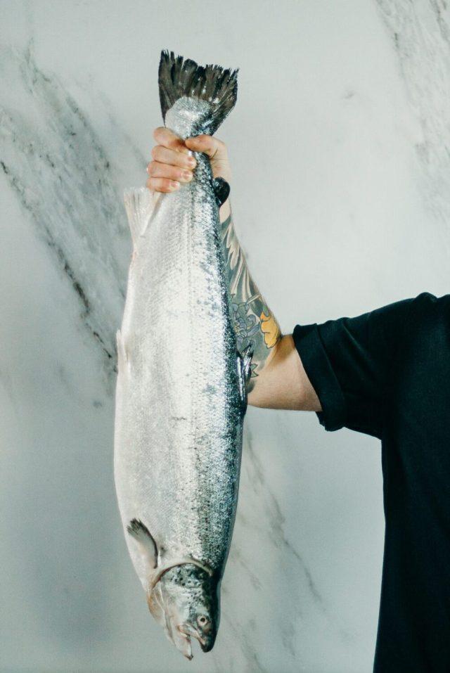 チリ銀鮭の危険性。気にしすぎな面も?!