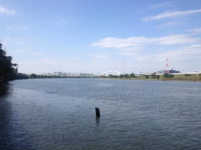 ハゼクランクのポイントは河口