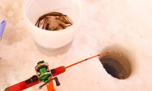 ワカサギ釣りは冬の風物詩
