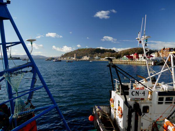port d'Oban (Ecosse)