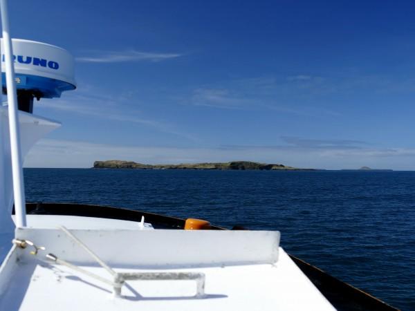 sortie en bateau - île de Staffa (Ecosse)