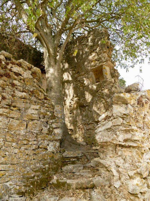 Les caus(ses) de la ruine - Découverte du Hameau de Montcalmès dans l'Hérault par Fish & Child(ren)