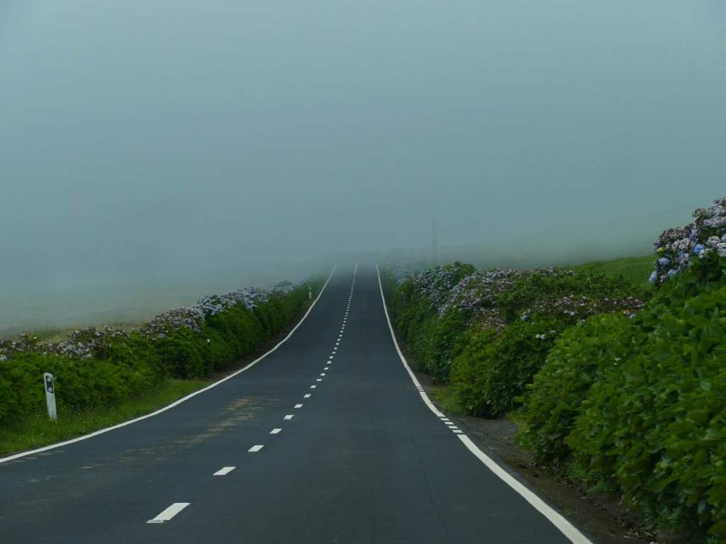barrière de brume sur Sao Jorge