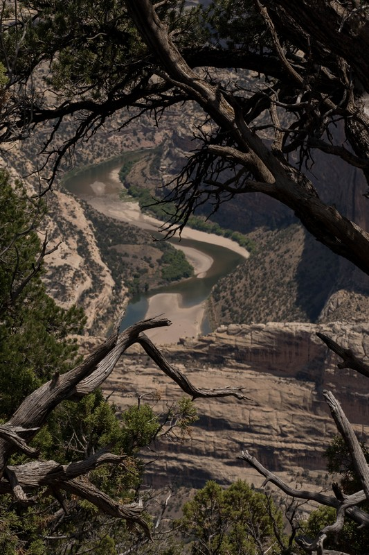 La Green River dans Dinosaur National Monument
