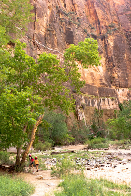 Riverside walk - Zion