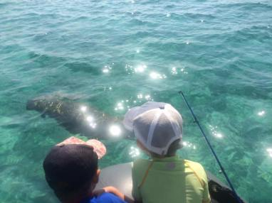 Duarte Jnr. and Kien watching a dugong in awe. The exquisite Bazaruto Archipelago…