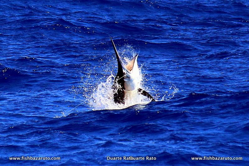 Another fab marlin trip to Bazaruto by FishBazaruto.com